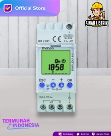 Digital Timer Theben